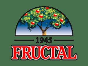 fructal-300x225